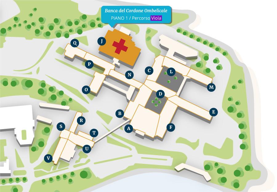 Banca del Cordone Ombelicale - Mappa Policlinico Gemelli