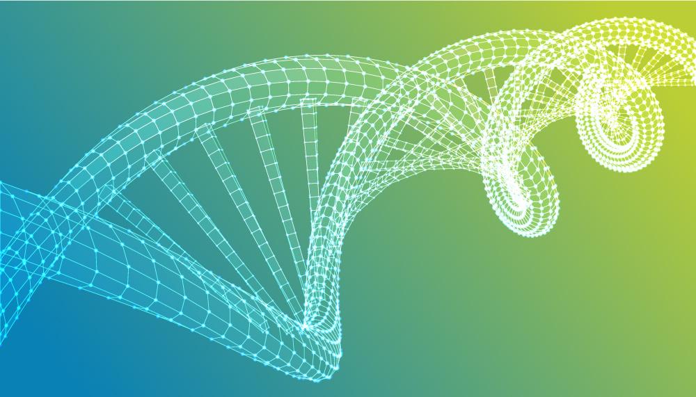 Test genetici - Policlinico Gemelli